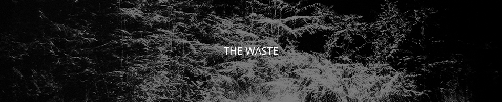 Tracy Hill - The Waste